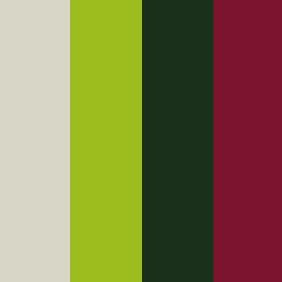 Beispiel Farben Coach